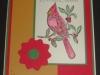 cardinal-poinsettia