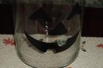 2009fallproject-glassjar