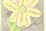 2007justpunchy-saharaflower