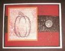 autumnharvest-fossil-stone