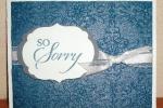 So Sorry-homemade spritz
