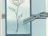 bloomin-wcwash